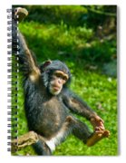 Playful Chimp Spiral Notebook