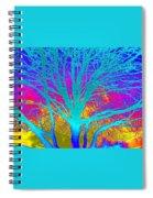 Playful Colors 4 Spiral Notebook