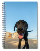 Playful Dog Closeup Spiral Notebook