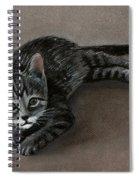 Playful Kitten Spiral Notebook