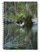 Playful Pelican Spiral Notebook