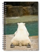 Playful Polar Bear Spiral Notebook
