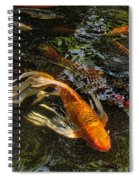 Playing Koi With Me Spiral Notebook