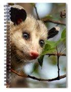 Playing Possum Spiral Notebook