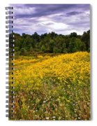 Pleasant Meadow Foreboding Sky Spiral Notebook