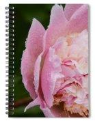 Pleasantly Pink  Spiral Notebook