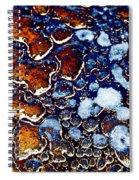 Plenitude Spiral Notebook