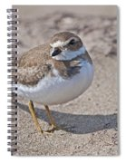 Plover Lover.. Spiral Notebook