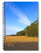 Pluff Mud And Salt Marsh At Hunting Island State Park Spiral Notebook
