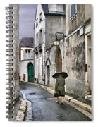 Pluie A Chartres - 1 Spiral Notebook