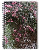 Plum Blossom In The Snow Spiral Notebook
