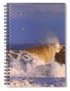 Plum Island Waves Spiral Notebook