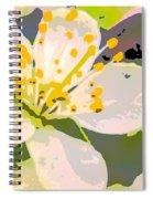 Plum Pink Spiral Notebook