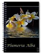 Plumeria Alba Spiral Notebook