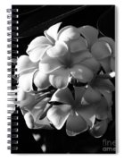 Plumeria Black White Spiral Notebook