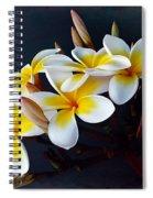 Plumeria Bouquet 2 Spiral Notebook