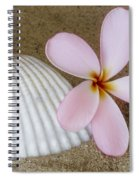 Plumeria Flower And Sea Shell Spiral Notebook