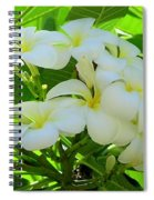 Plumeria Greeting The Morning Spiral Notebook