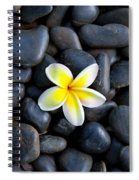 Plumeria Pebbles Spiral Notebook