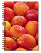 Plums  Spiral Notebook