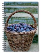 Plums In A Basket, Southern Bohemia Spiral Notebook