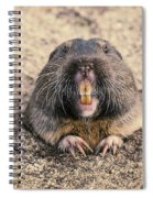 Pocket Gopher Chatting Spiral Notebook
