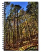 Pocono Trees Spiral Notebook