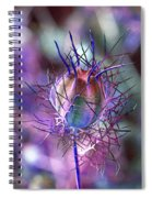 Pod Play Spiral Notebook