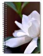 Poetry In White Spiral Notebook