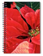 Poinsettia  Diamonds Spiral Notebook