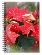 Poinsettia In Red And White Spiral Notebook