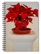 Poinsettia On A Pedestal No 1 Spiral Notebook