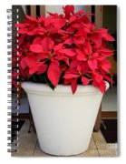 Poinsettias In A Planter Spiral Notebook