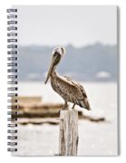 Point Clear Spiral Notebook