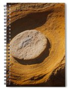 Point Lobos Abstract 1 Spiral Notebook