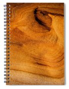 Point Lobos Abstract 10 Spiral Notebook