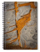 Point Lobos Abstract 13 Spiral Notebook
