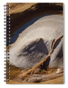 Point Lobos Abstract 3 Spiral Notebook