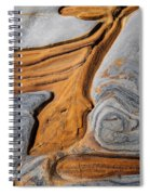 Point Lobos Abstract 5 Spiral Notebook