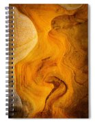Point Lobos Abstract 6 Spiral Notebook