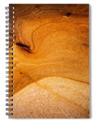 Point Lobos Abstract 8 Spiral Notebook