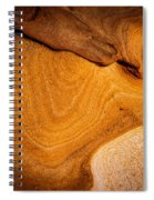 Point Lobos Abstract 9 Spiral Notebook