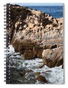 Point Lobos Coast 2 Spiral Notebook