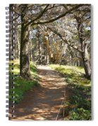 Point Lobos Cypress Path Spiral Notebook