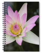 Pointed Pink Lily Spiral Notebook