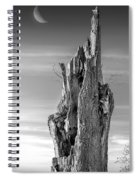 Pointing To The Heavens - Bw Spiral Notebook