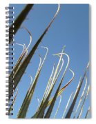Pointy Spiral Notebook