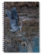 Poised For Flight Spiral Notebook
