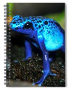 Poison Blue Dart Frog Spiral Notebook