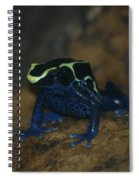 Poisonous Frog 02 Spiral Notebook